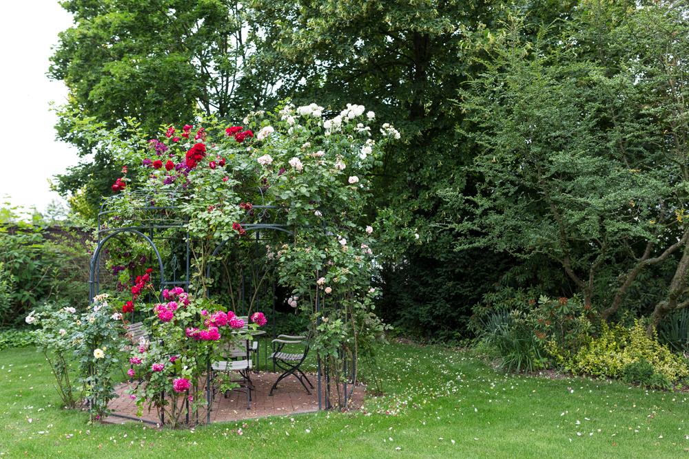 Gartenbau Andreas Quante Gartengestaltung