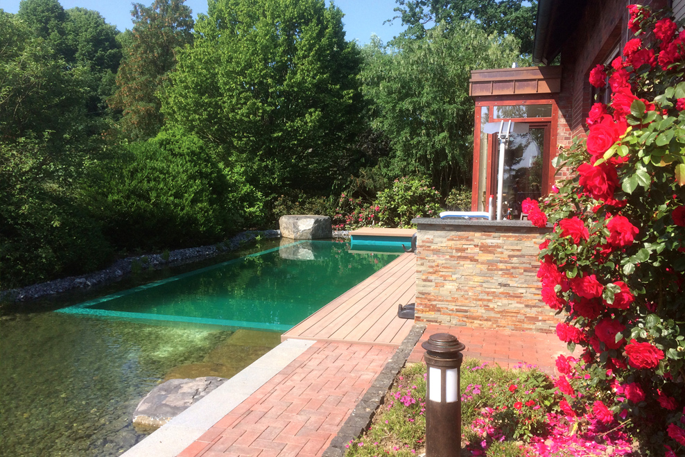 Teiche und Schwimmteiche Gartenbau Andreas Quante Schwimmteich